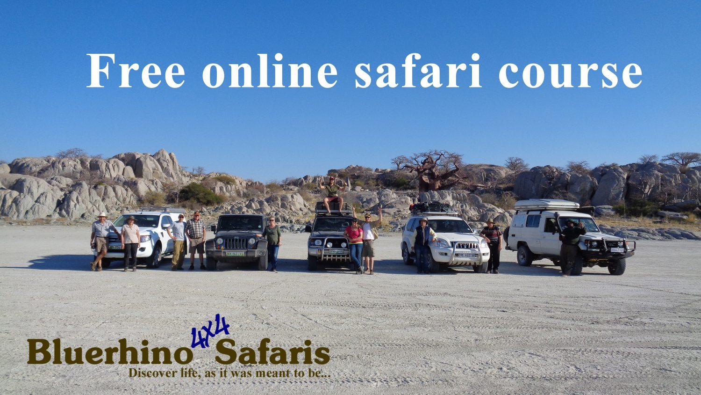 Free Online Safari Course