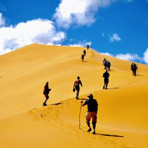 Kgalagadi & Southern Namibia 2021
